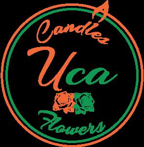 Florarie Tulcea-UcaDecor