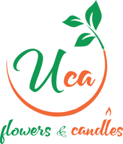 Florarie Tulcea –  Uca Flowers & Candles