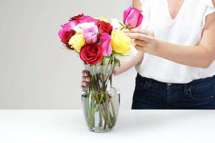 Flori - Evitați lumina directă a soarelui, căldura, curentul și fructele.
