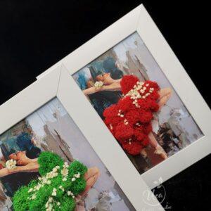 Florarie Tulcea Rama licheni stabilizati Uca75 – grafica personalizata, balerina 20x15cm