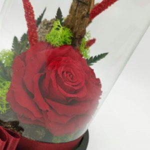 Trandafir criogenat in cupola Uca165L – cupola H21cm, trandafir criogenat L, aranjament mini din flori uscate, licheni stabilizati si decoruri naturale